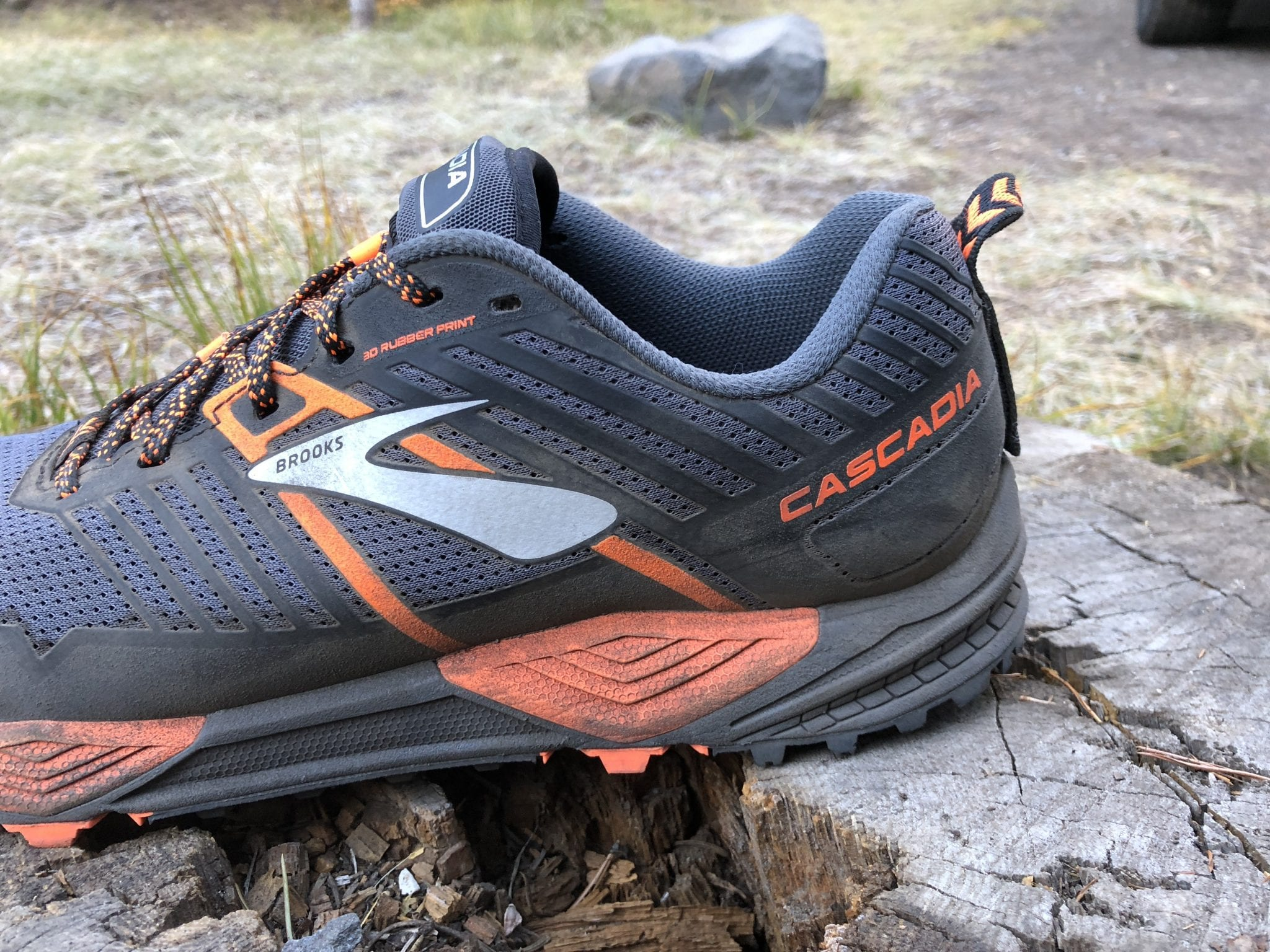 Brooks Cascadia13 9