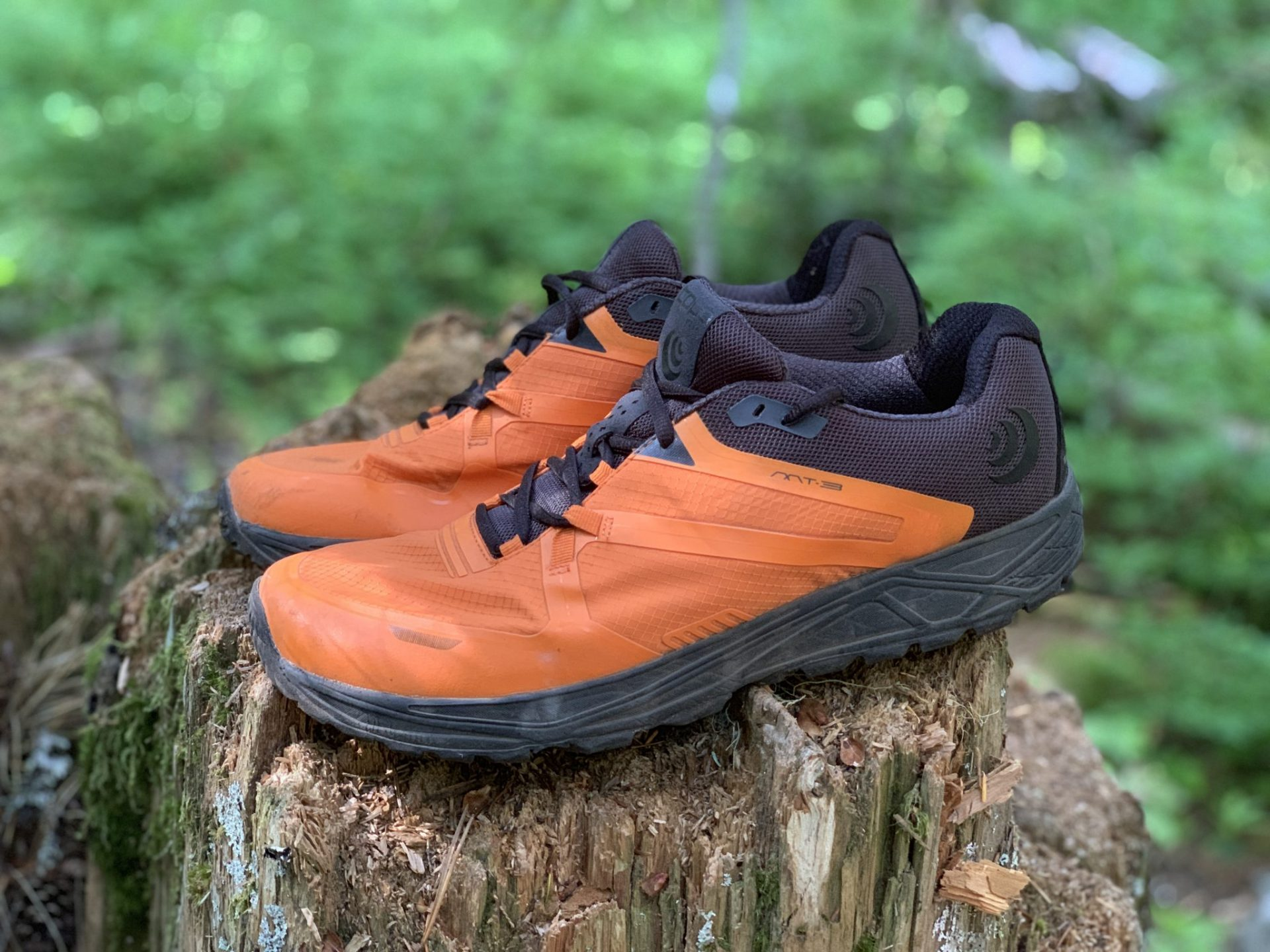 Topo Athletic MT-3 Review | Running